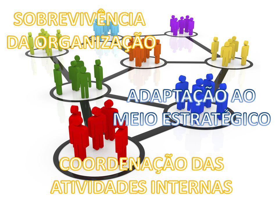 Para GEERT HOFSTEDE, cultura organizacional pode ser definida como a programação coletiva da mente que distingue os membros de uma organização dos de outra.