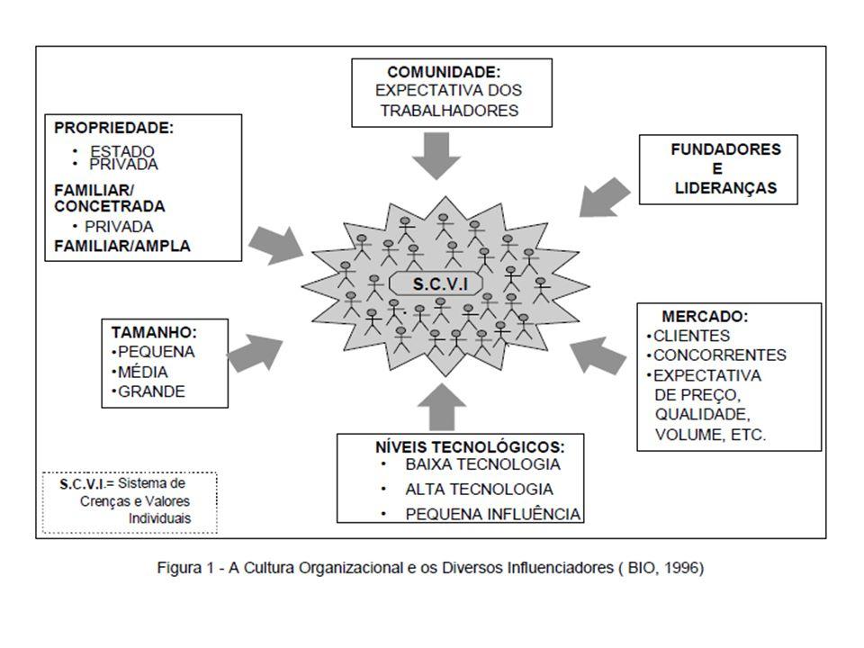 3. VANTAGENS E DESVANTAGENS DA CULTURA ORGANIZACIONAL