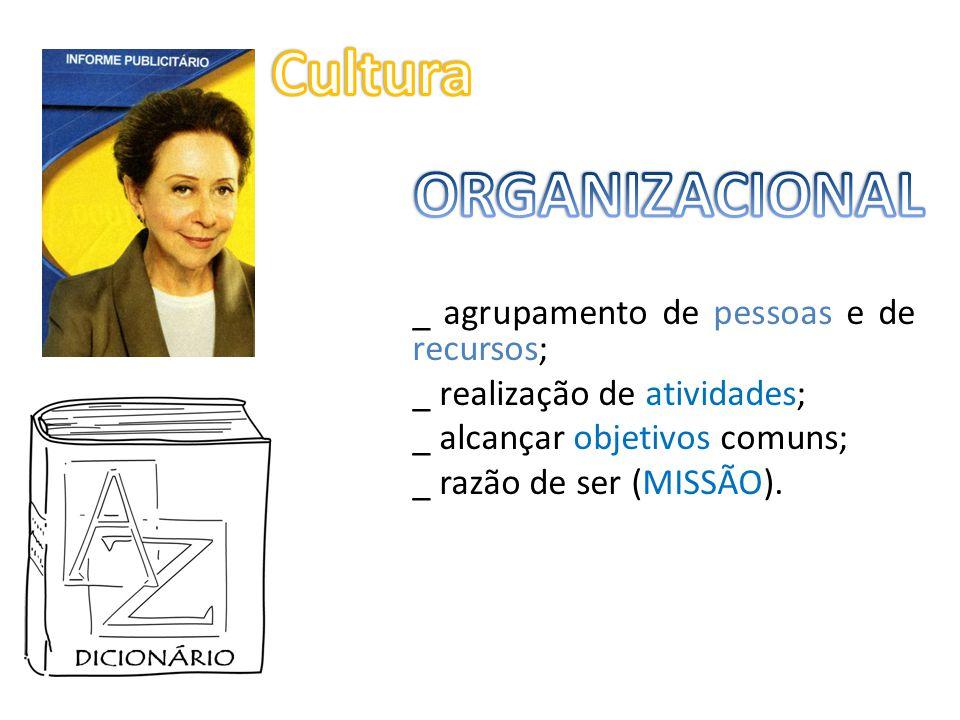 RELAÇÃO estável entre: _ estratégias; _ decisões; _ atividades; _ recursos disponíveis.
