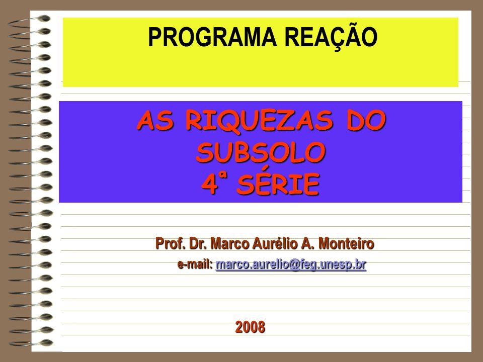 Prof. Dr. Marco Aurélio A. Monteiro e-mail: marco.aurelio@feg.unesp.br e-mail: marco.aurelio@feg.unesp.brmarco.aurelio@feg.unesp.br PROGRAMA REAÇÃO AS