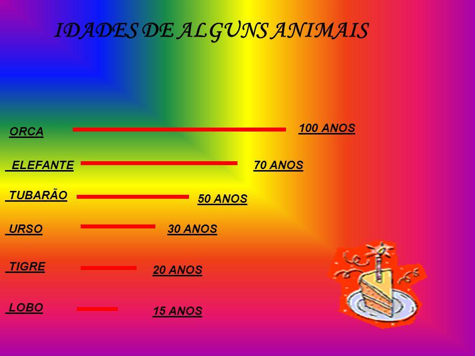 IDADES DE ALGUNS ANIMAIS ORCA 100 ANOS ELEFANTE70 ANOS TUBARÃO 50 ANOS URSO30 ANOS TIGRE 20 ANOS LOBO 15 ANOS