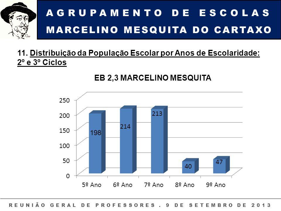 AGRUPAMENTO DE ESCOLAS MARCELINO MESQUITA DO CARTAXO REUNIÃO GERAL DE PROFESSORES. 9 DE SETEMBRO DE 2013 11. Distribuição da População Escolar por Ano