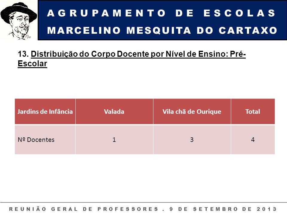 AGRUPAMENTO DE ESCOLAS MARCELINO MESQUITA DO CARTAXO REUNIÃO GERAL DE PROFESSORES. 9 DE SETEMBRO DE 2013 13. Distribuição do Corpo Docente por Nível d