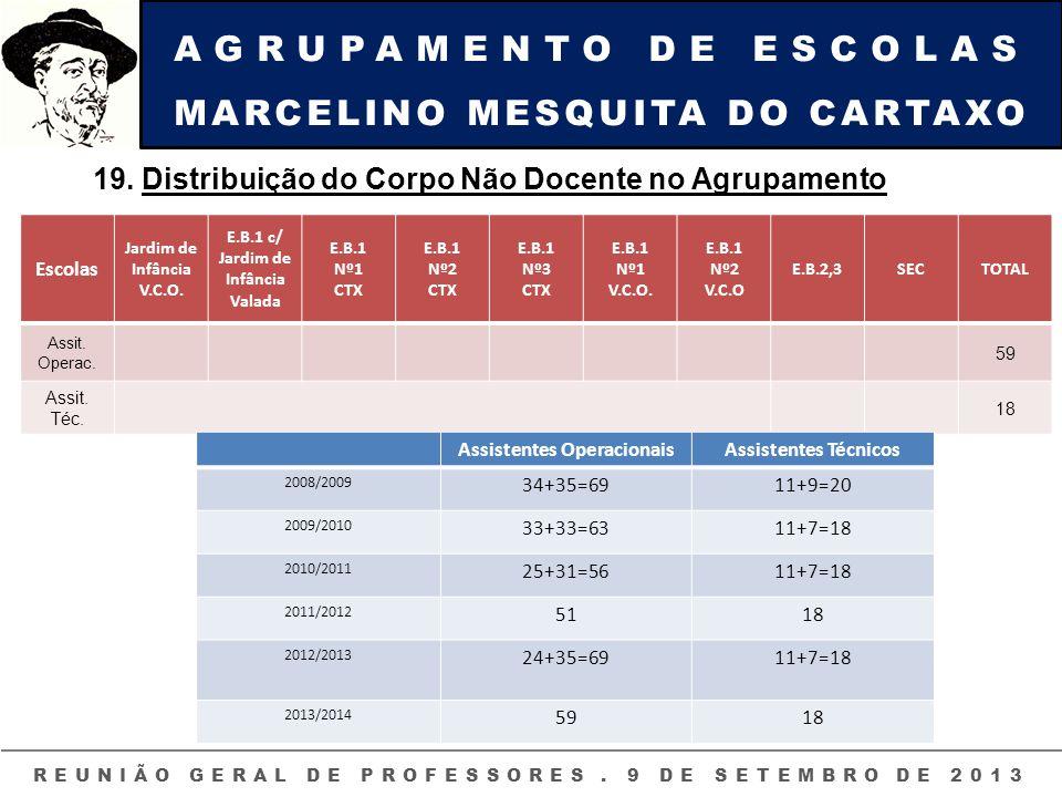 AGRUPAMENTO DE ESCOLAS MARCELINO MESQUITA DO CARTAXO REUNIÃO GERAL DE PROFESSORES. 9 DE SETEMBRO DE 2013 19. Distribuição do Corpo Não Docente no Agru