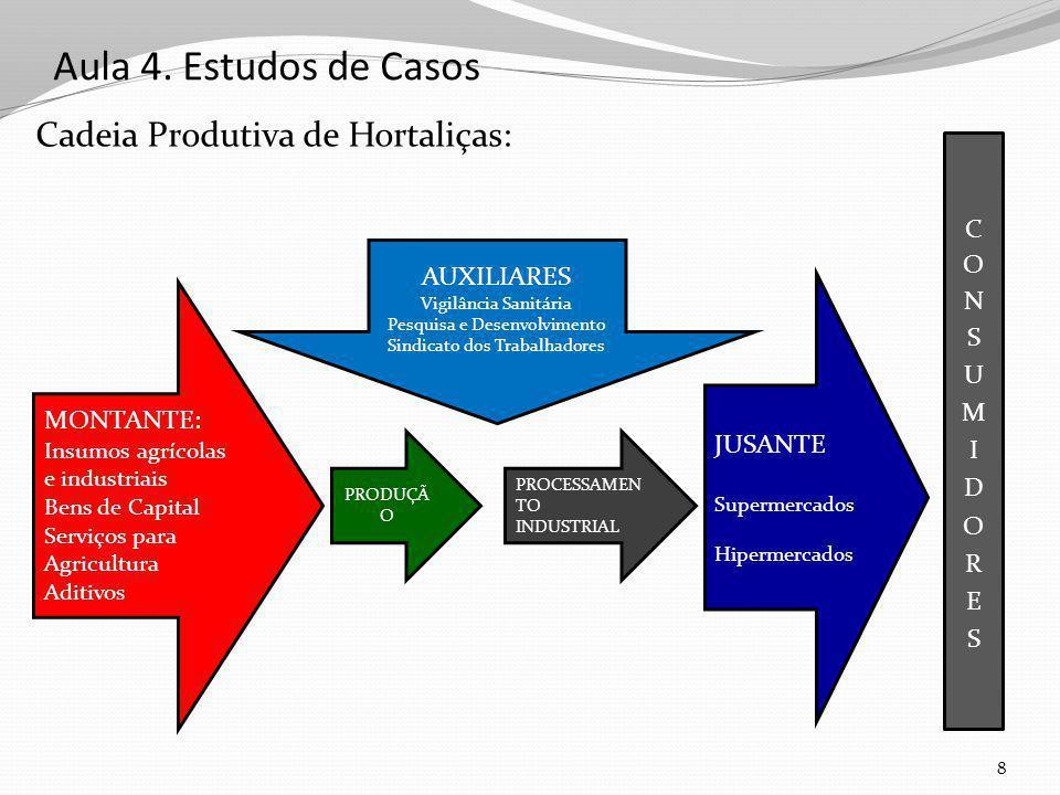 Aula 4. Estudos de Casos Cadeia Produtiva de Hortaliças: 8 MONTANTE: Insumos agrícolas e industriais Bens de Capital Serviços para Agricultura Aditivo