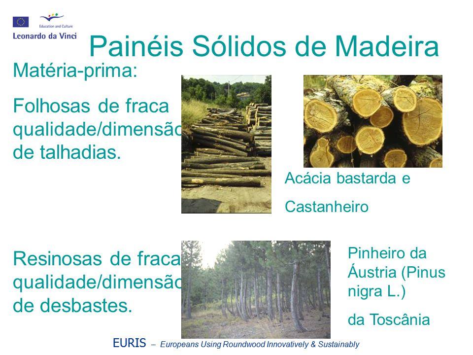 EURIS – Europeans Using Roundwood Innovatively & Sustainably Painéis Sólidos de Madeira Matéria-prima: Folhosas de fraca qualidade/dimensão de talhadi