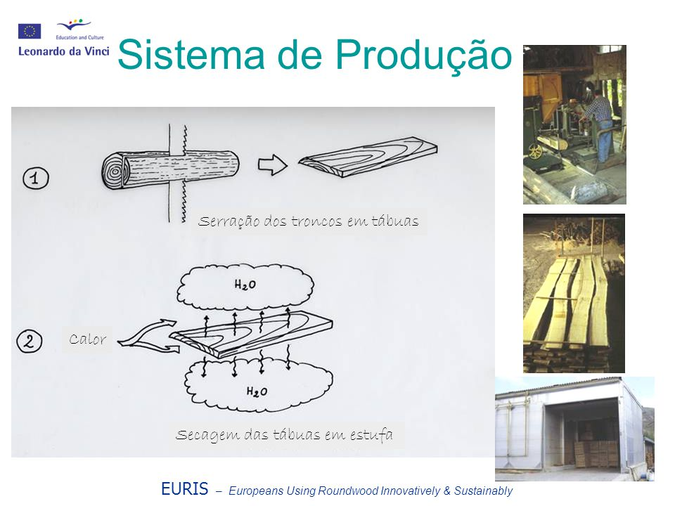 EURIS – Europeans Using Roundwood Innovatively & Sustainably Sistema de Produção Serração dos troncos em tábuas Calor Secagem das tábuas em estufa