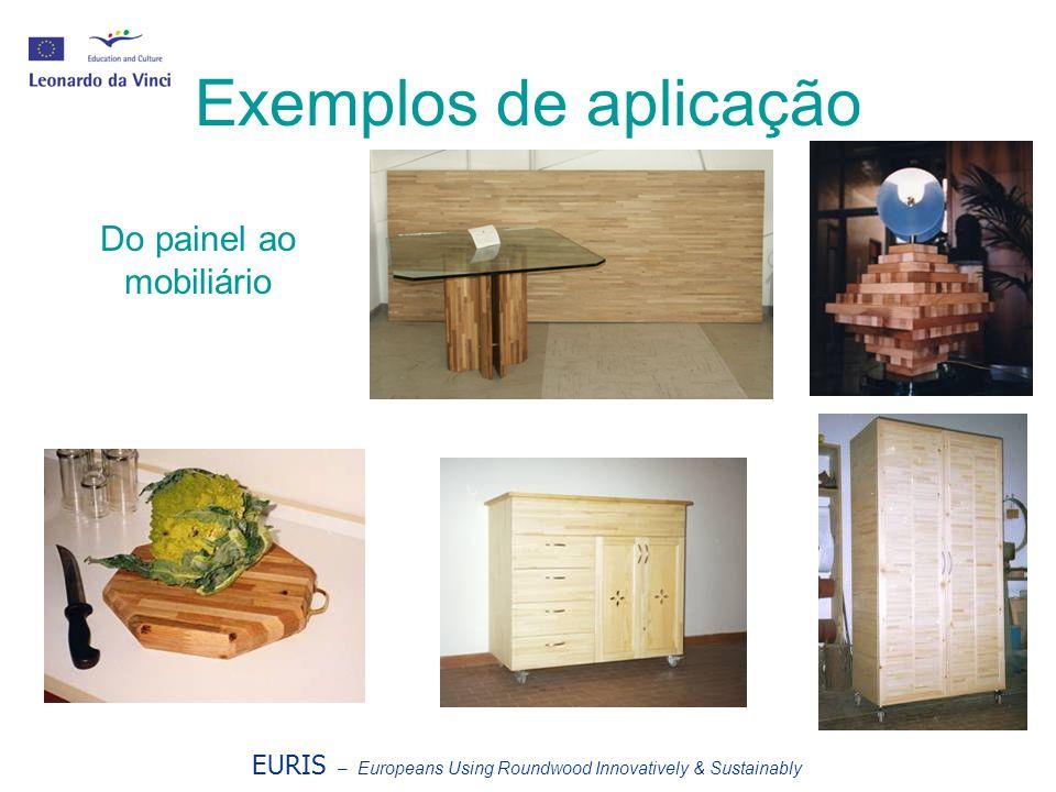 EURIS – Europeans Using Roundwood Innovatively & Sustainably Exemplos de aplicação Do painel ao mobiliário