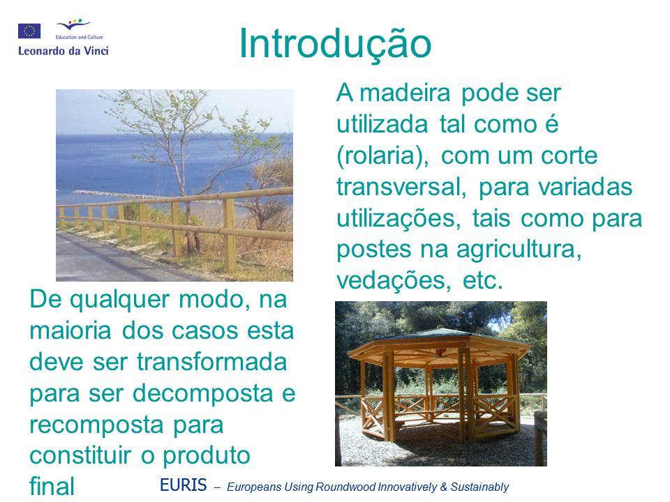Introdução EURIS – Europeans Using Roundwood Innovatively & Sustainably A madeira pode ser utilizada tal como é (rolaria), com um corte transversal, p