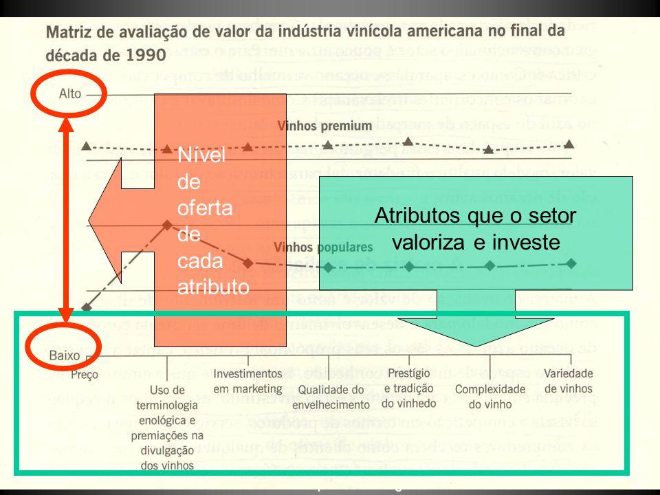 ©Anthropos Consulting Atributos que o setor valoriza e investe Nível de oferta de cada atributo