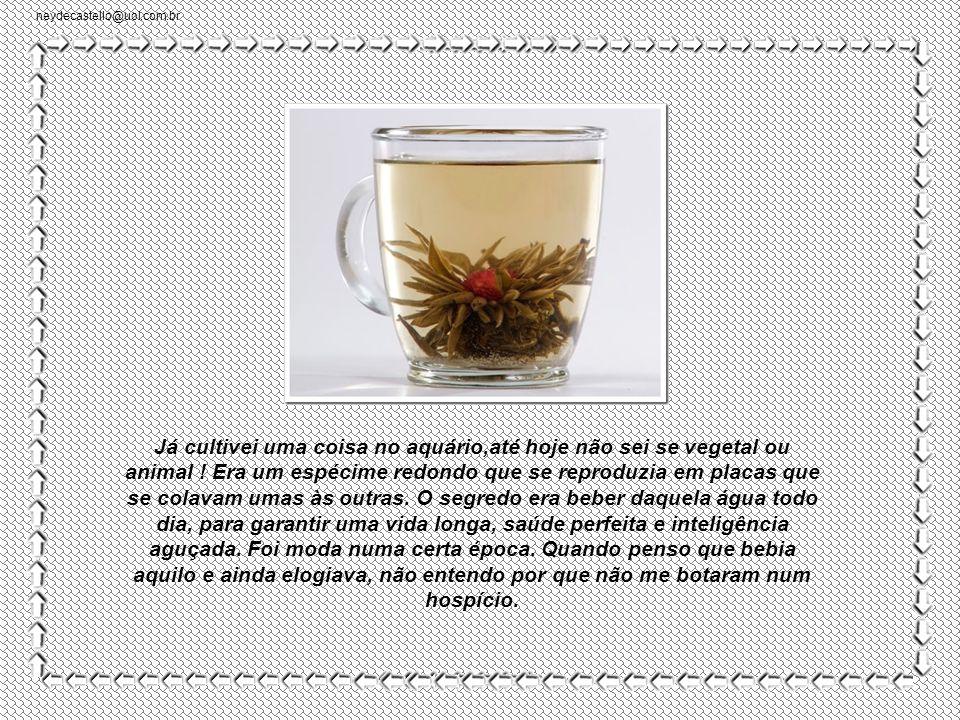 neydecastello@uol.com.br -Você não é um bezerro.