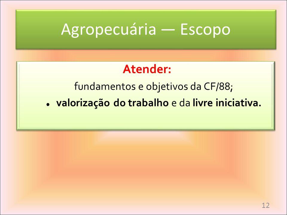 Agropecuária Escopo Atender: fundamentos e objetivos da CF/88; valorização do trabalho e da livre iniciativa. Atender: fundamentos e objetivos da CF/8