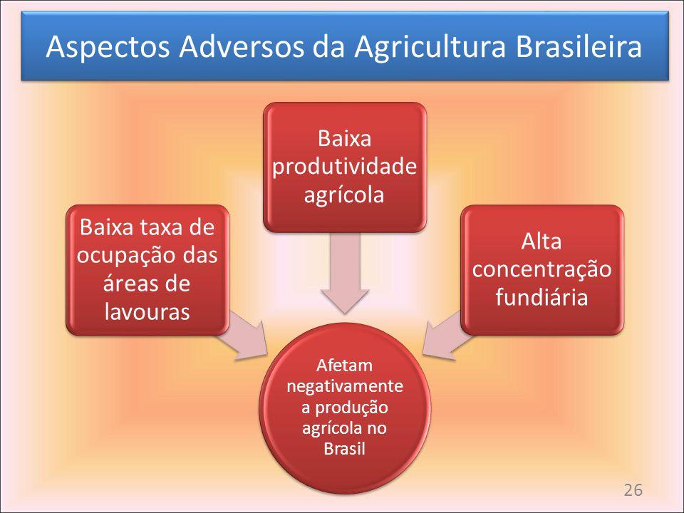 Aspectos Adversos da Agricultura Brasileira Afetam negativamente a produção agrícola no Brasil Baixa taxa de ocupação das áreas de lavouras Baixa prod