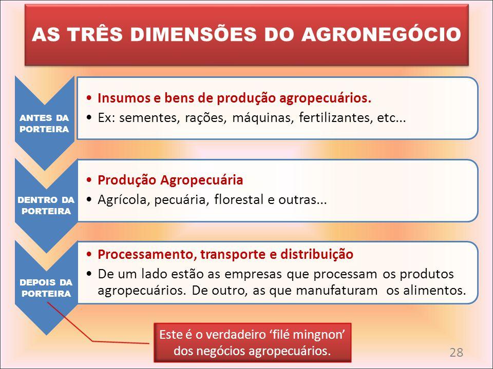 AS TRÊS DIMENSÕES DO AGRONEGÓCIO ANTES DA PORTEIRA Insumos e bens de produção agropecuários. Ex: sementes, rações, máquinas, fertilizantes, etc... DEN