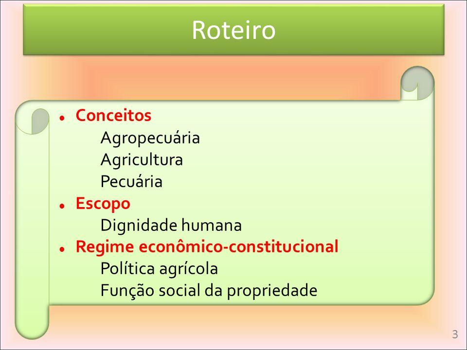 Roteiro Conceitos Agropecuária Agricultura Pecuária Escopo Dignidade humana Regime econômico-constitucional Política agrícola Função social da proprie