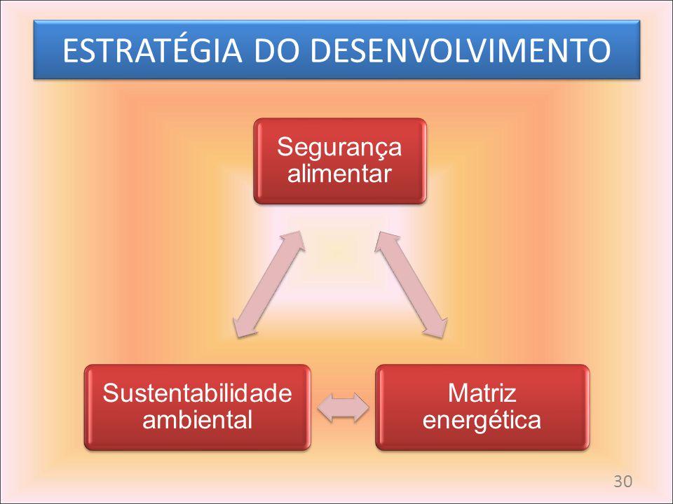 ESTRATÉGIA DO DESENVOLVIMENTO Segurança alimentar Matriz energética Sustentabilidade ambiental 30