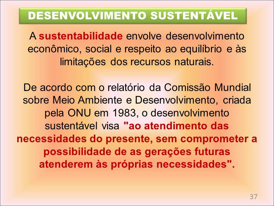 A sustentabilidade envolve desenvolvimento econômico, social e respeito ao equilíbrio e às limitações dos recursos naturais. De acordo com o relatório