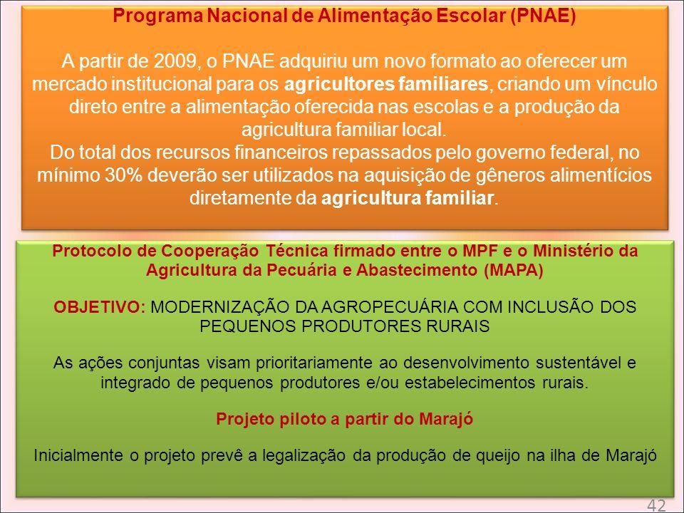 Programa Nacional de Alimentação Escolar (PNAE) A partir de 2009, o PNAE adquiriu um novo formato ao oferecer um mercado institucional para os agricul