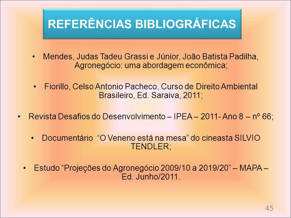 REFERÊNCIAS BIBLIOGRÁFICAS Mendes, Judas Tadeu Grassi e Júnior, João Batista Padilha, Agronegócio: uma abordagem econômica; Fiorillo, Celso Antonio Pa