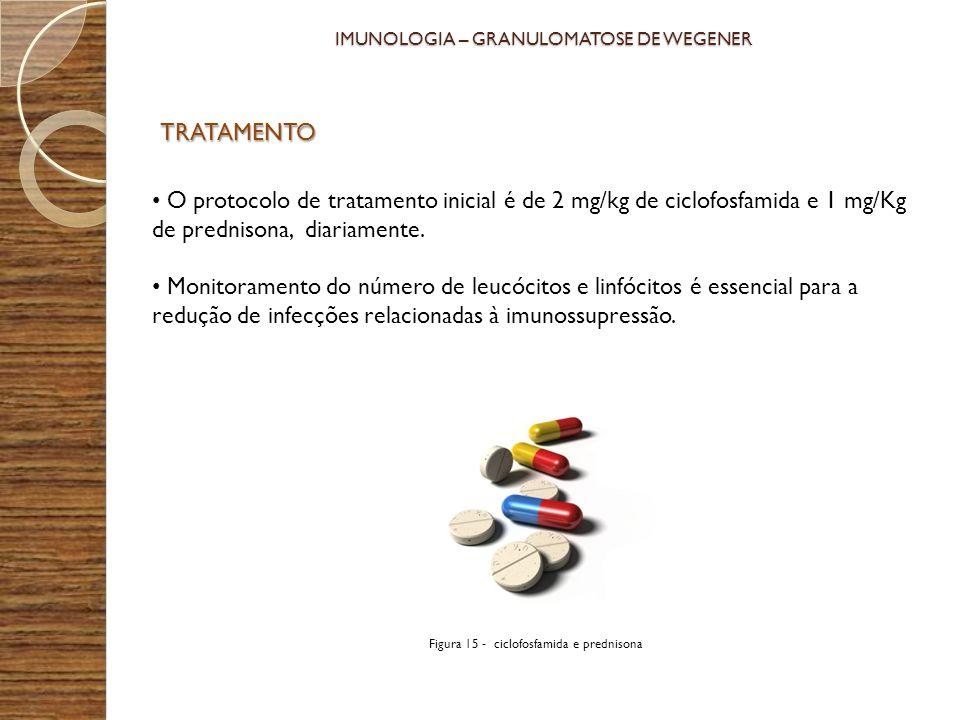 TRATAMENTO O protocolo de tratamento inicial é de 2 mg/kg de ciclofosfamida e 1 mg/Kg de prednisona, diariamente. Monitoramento do número de leucócito