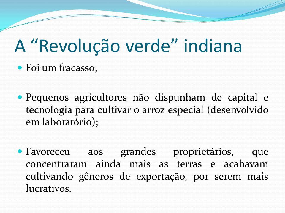 A Revolução verde indiana Foi um fracasso; Pequenos agricultores não dispunham de capital e tecnologia para cultivar o arroz especial (desenvolvido em