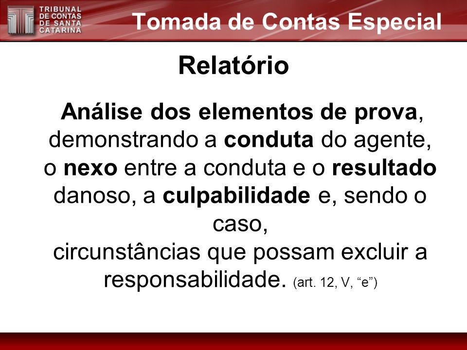 Análise dos elementos de prova, demonstrando a conduta do agente, o nexo entre a conduta e o resultado danoso, a culpabilidade e, sendo o caso, circun