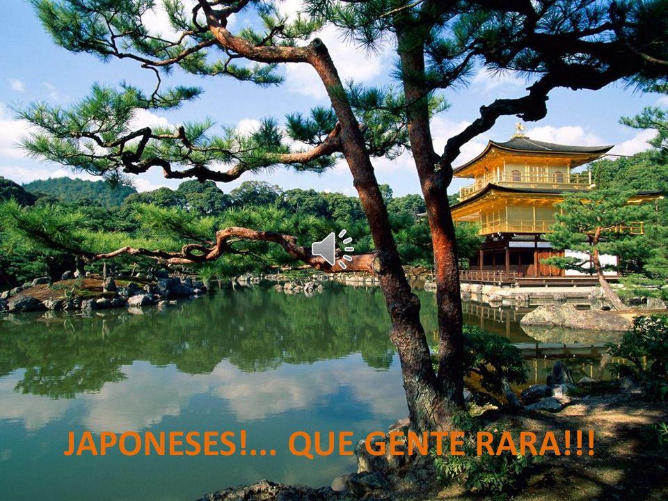 JAPONESES!... QUE GENTE RARA!!!