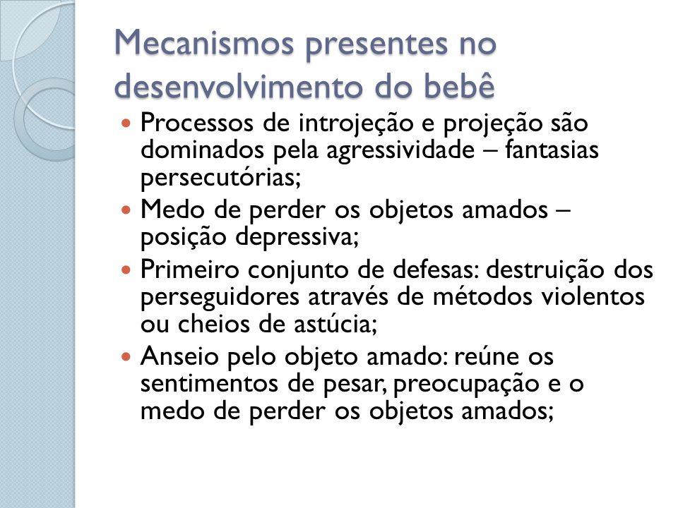 Mecanismos presentes no desenvolvimento do bebê Processos de introjeção e projeção são dominados pela agressividade – fantasias persecutórias; Medo de