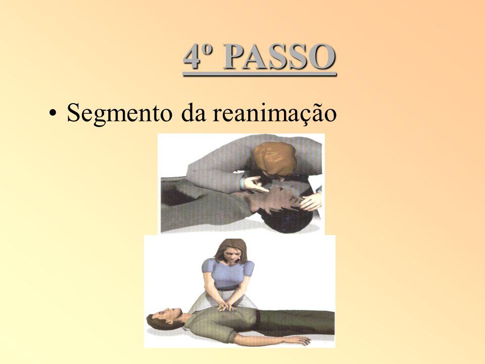 4º PASSO Segmento da reanimação