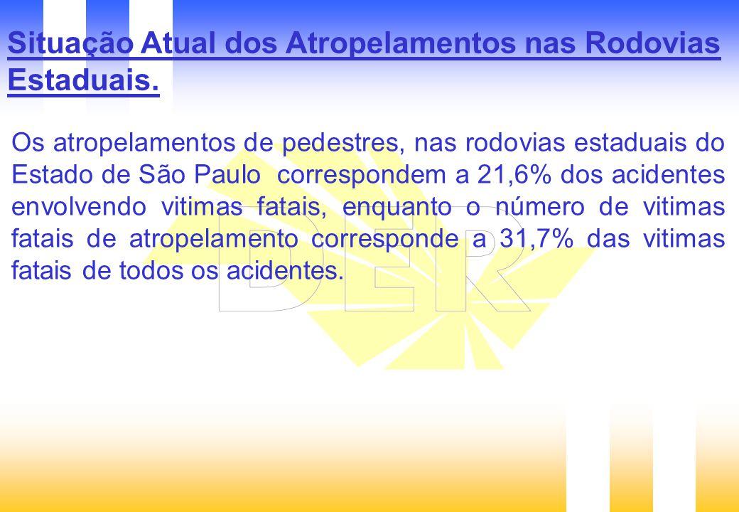 Situação Atual dos Atropelamentos nas Rodovias Estaduais.