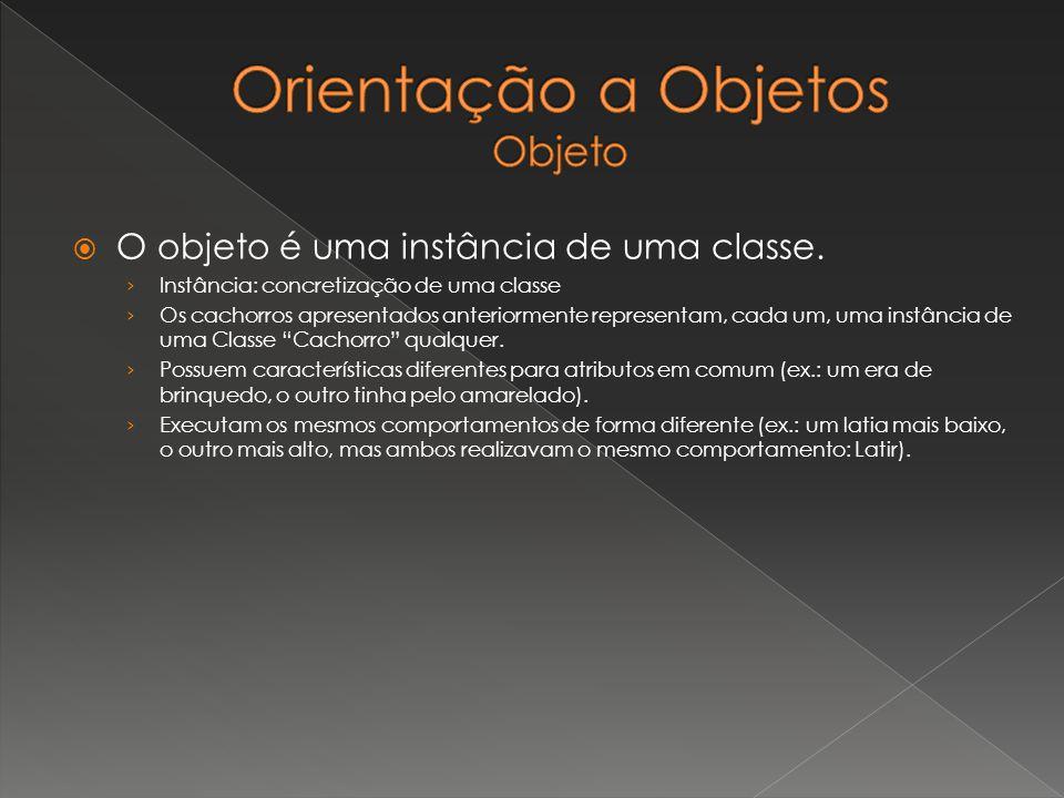 O objeto é uma instância de uma classe. Instância: concretização de uma classe Os cachorros apresentados anteriormente representam, cada um, uma instâ