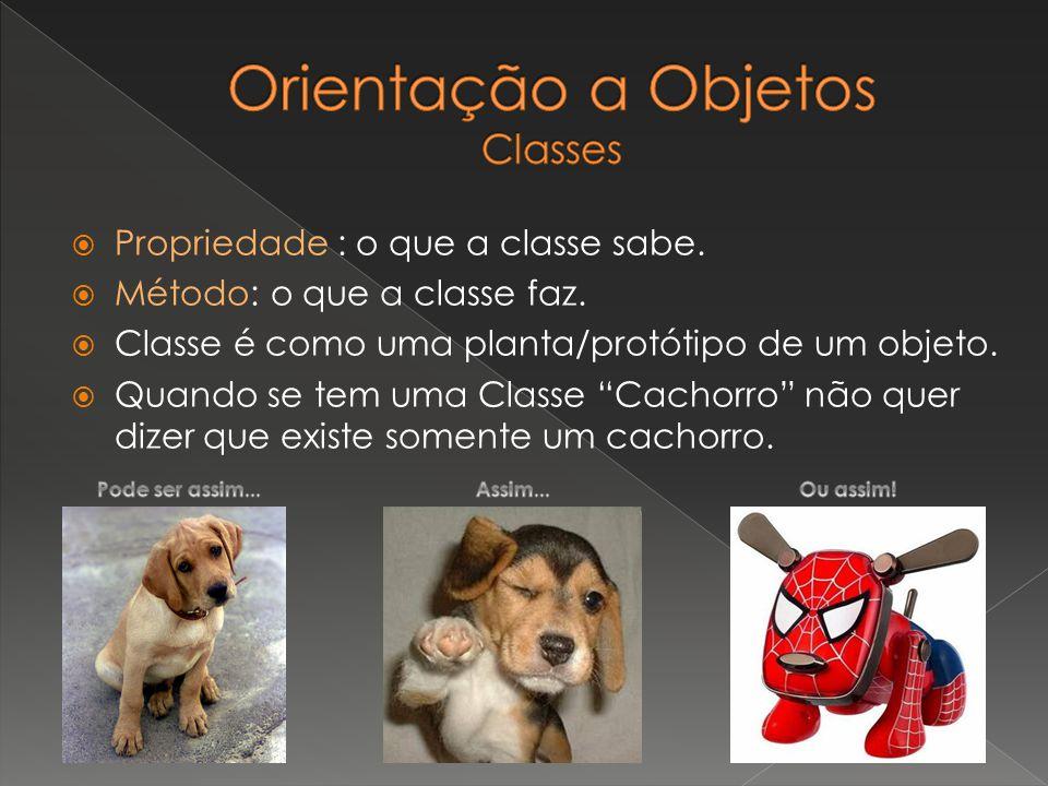 Propriedade : o que a classe sabe. Método: o que a classe faz. Classe é como uma planta/protótipo de um objeto. Quando se tem uma Classe Cachorro não