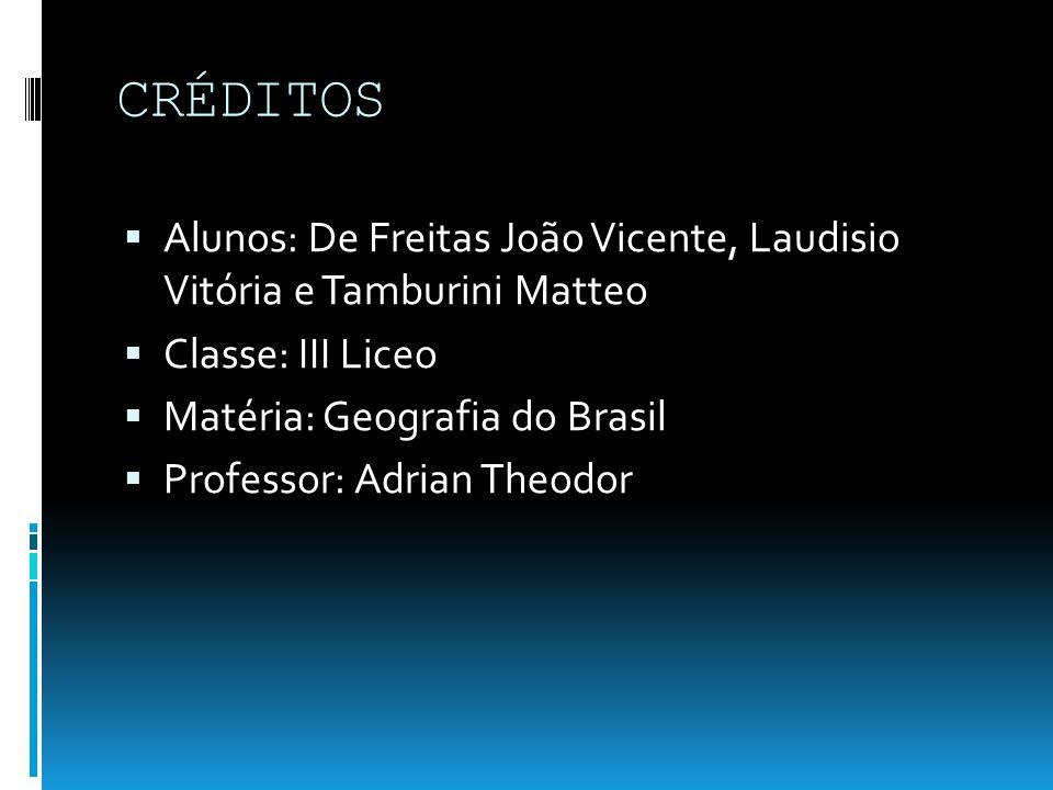 CRÉDITOS Alunos: De Freitas João Vicente, Laudisio Vitória e Tamburini Matteo Classe: III Liceo Matéria: Geografia do Brasil Professor: Adrian Theodor