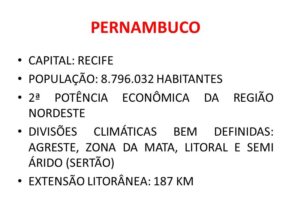 PERNAMBUCO CAPITAL: RECIFE POPULAÇÃO: 8.796.032 HABITANTES 2ª POTÊNCIA ECONÔMICA DA REGIÃO NORDESTE DIVISÕES CLIMÁTICAS BEM DEFINIDAS: AGRESTE, ZONA D
