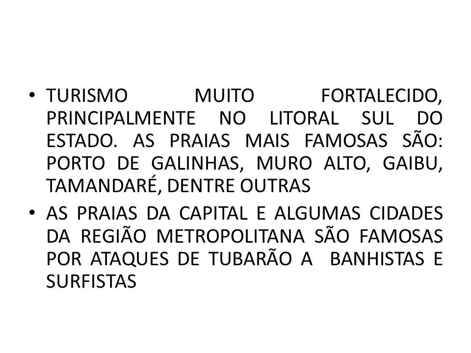 TURISMO MUITO FORTALECIDO, PRINCIPALMENTE NO LITORAL SUL DO ESTADO. AS PRAIAS MAIS FAMOSAS SÃO: PORTO DE GALINHAS, MURO ALTO, GAIBU, TAMANDARÉ, DENTRE