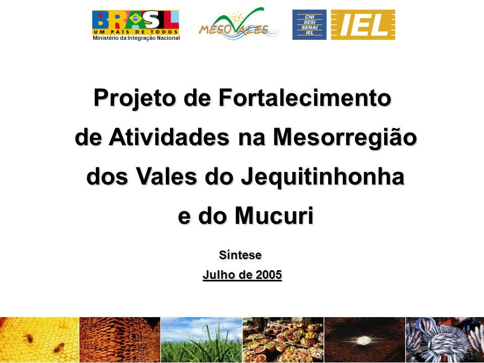 Ministério da Integração Nacional Projeto de Fortalecimento de Atividades na Mesorregião de Atividades na Mesorregião dos Vales do Jequitinhonha dos Vales do Jequitinhonha e do Mucuri e do MucuriSíntese Julho de 2005