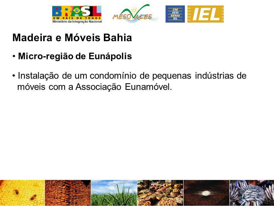 Ministério da Integração Nacional Madeira e MóveisBahia Micro-região de Eunápolis Instalação de um condomínio de pequenas indústrias de móveis com a Associação Eunamóvel.