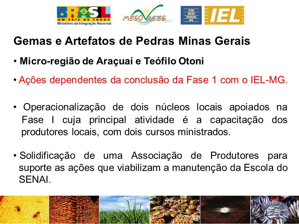 Ministério da Integração Nacional Gemas e Artefatos de PedrasMinas Gerais Micro-região de Araçuaí e Teófilo Otoni Ações dependentes da conclusão da Fase 1 com o IEL-MG.