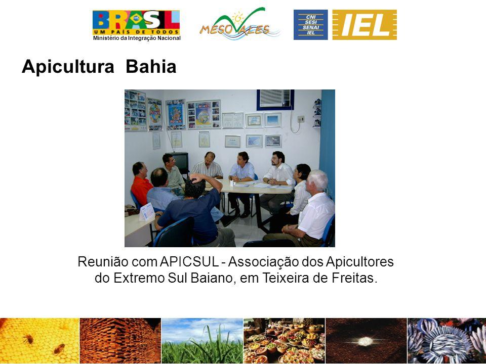 Ministério da Integração Nacional ApiculturaBahia Reunião com APICSUL - Associação dos Apicultores do Extremo Sul Baiano, em Teixeira de Freitas.