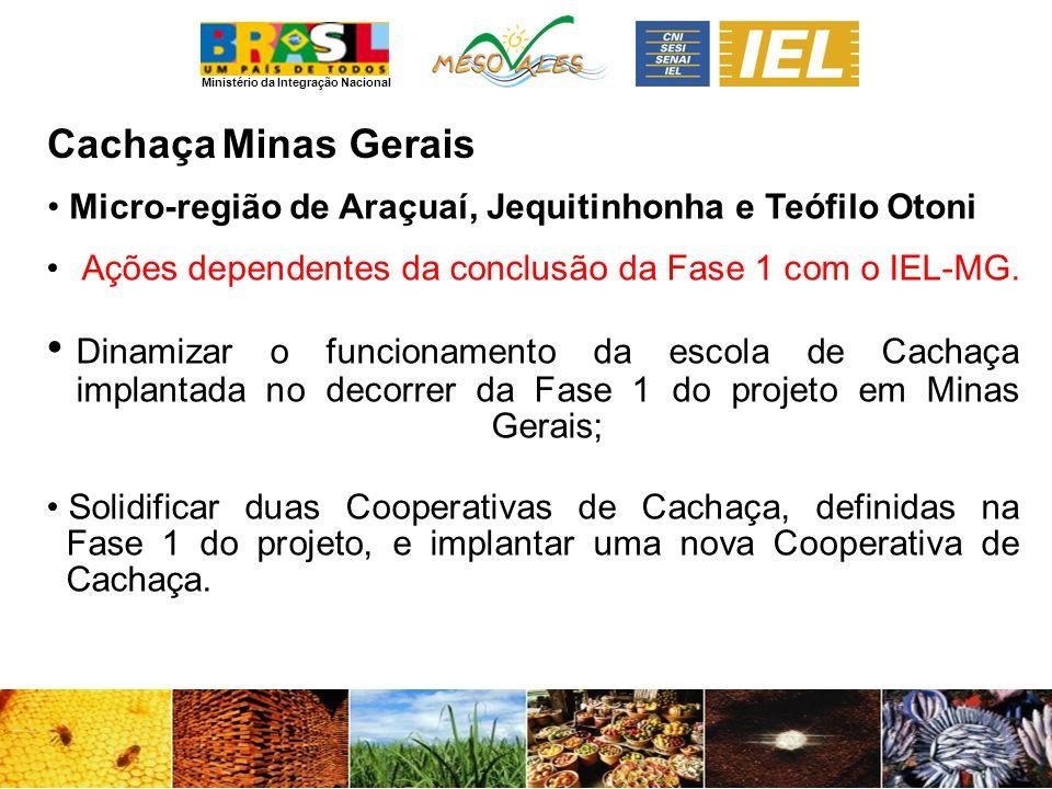 Ministério da Integração Nacional CachaçaMinas Gerais Micro-região de Araçuaí, Jequitinhonha e Teófilo Otoni Ações dependentes da conclusão da Fase 1 com o IEL-MG.