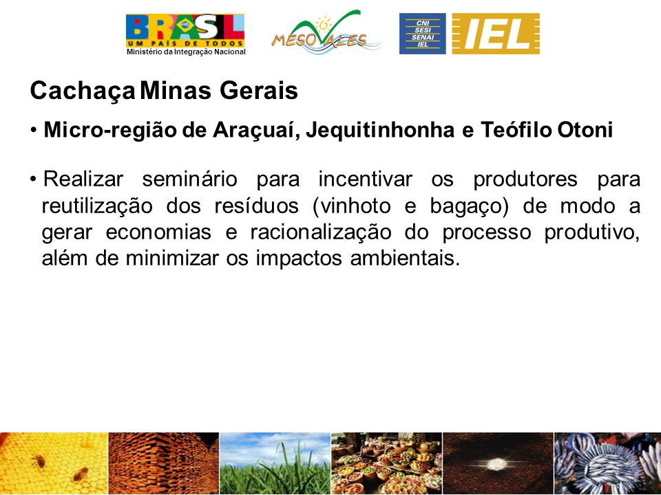 Ministério da Integração Nacional CachaçaMinas Gerais Micro-região de Araçuaí, Jequitinhonha e Teófilo Otoni Realizar seminário para incentivar os produtores para reutilização dos resíduos (vinhoto e bagaço) de modo a gerar economias e racionalização do processo produtivo, além de minimizar os impactos ambientais.