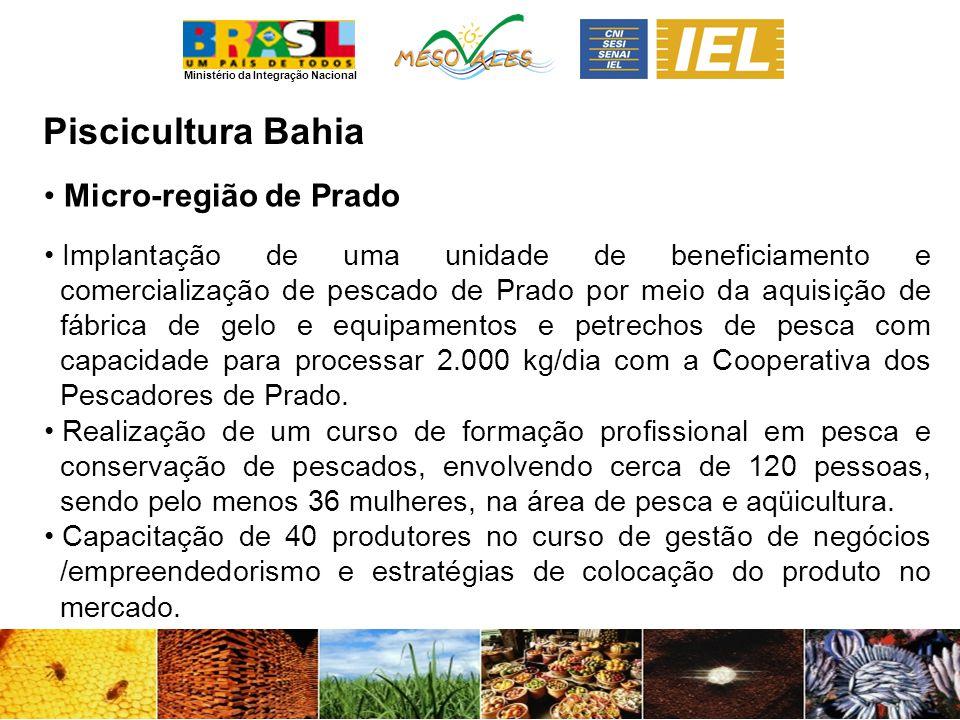 Ministério da Integração Nacional PisciculturaBahia Micro-região de Prado Implantação de uma unidade de beneficiamento e comercialização de pescado de Prado por meio da aquisição de fábrica de gelo e equipamentos e petrechos de pesca com capacidade para processar 2.000 kg/dia com a Cooperativa dos Pescadores de Prado.