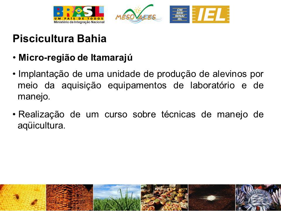 Ministério da Integração Nacional PisciculturaBahia Micro-região de Itamarajú Implantação de uma unidade de produção de alevinos por meio da aquisição equipamentos de laboratório e de manejo.