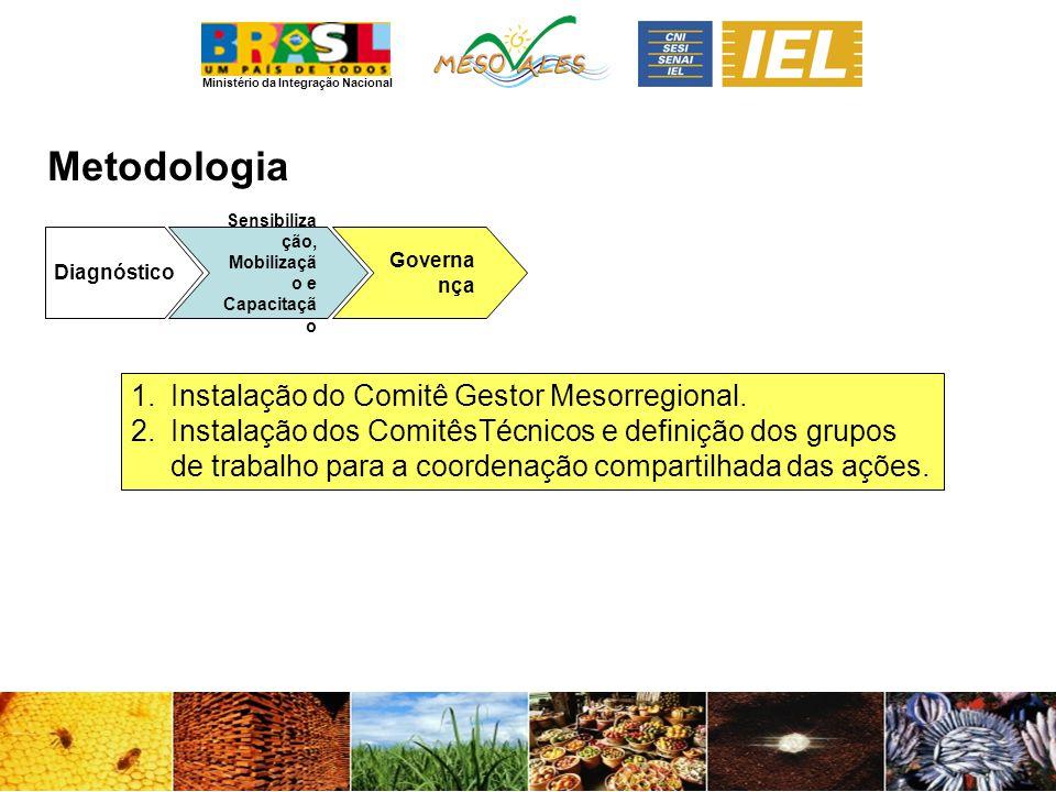 Ministério da Integração Nacional Metodologia Diagnóstico Sensibiliza ção, Mobilizaçã o e Capacitaçã o Governa nça 1.Instalação do Comitê Gestor Mesorregional.