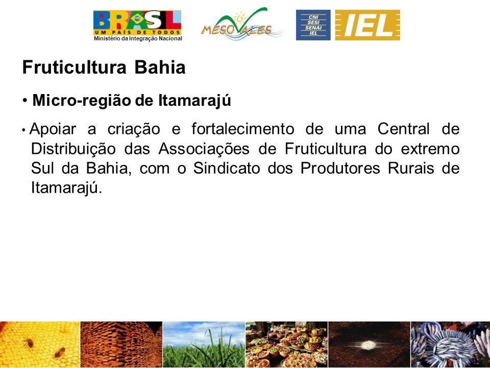 Ministério da Integração Nacional FruticulturaBahia Micro-região de Itamarajú Apoiar a criação e fortalecimento de uma Central de Distribuição das Associações de Fruticultura do extremo Sul da Bahia, com o Sindicato dos Produtores Rurais de Itamarajú.