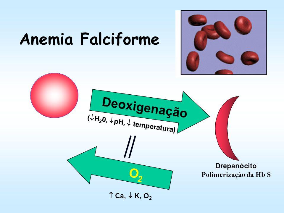 Anemia Falciforme Mutação pontual gênica (GAG GTG); Substituição de uma única base nucleotídica promove a síntese da cadeia globiníca diferente (glu p