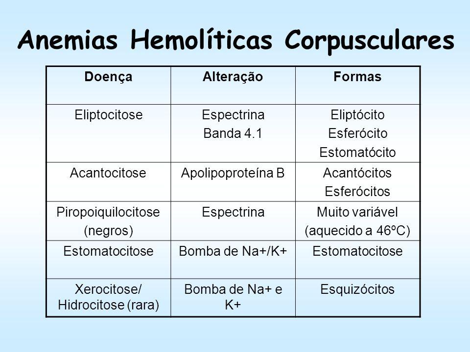 Membrana do Eritrócitos