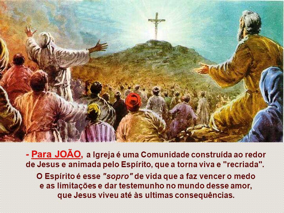 - Para JOÃO, a Igreja é uma Comunidade construída ao redor de Jesus e animada pelo Espírito, que a torna viva e recriada .