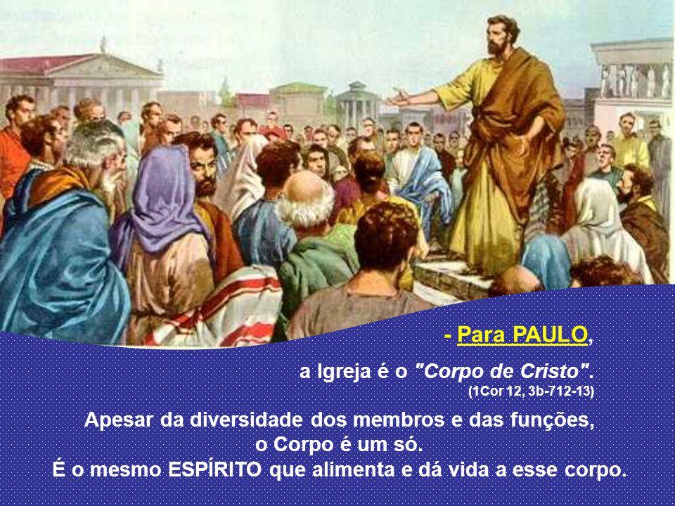 - Para JOÃO, a Igreja é uma Comunidade construída ao redor de Jesus e animada pelo Espírito, que a torna viva e