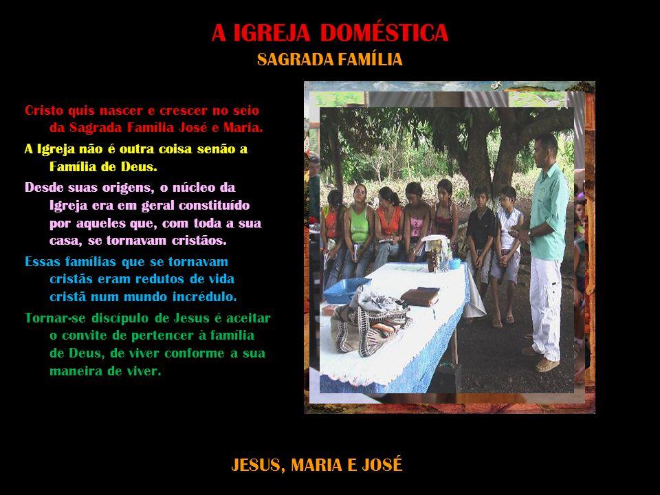 A IGREJA DOMÉSTICA SAGRADA FAMÍLIA Cristo quis nascer e crescer no seio da Sagrada Família José e Maria. A Igreja não é outra coisa senão a Família de